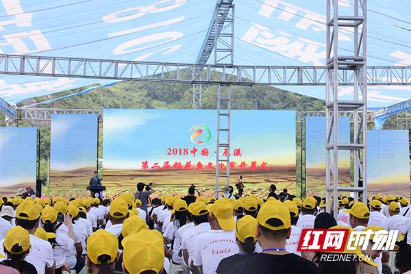 2018中国·辰溪第二届稻花鱼文化节开幕?引资16.8亿元