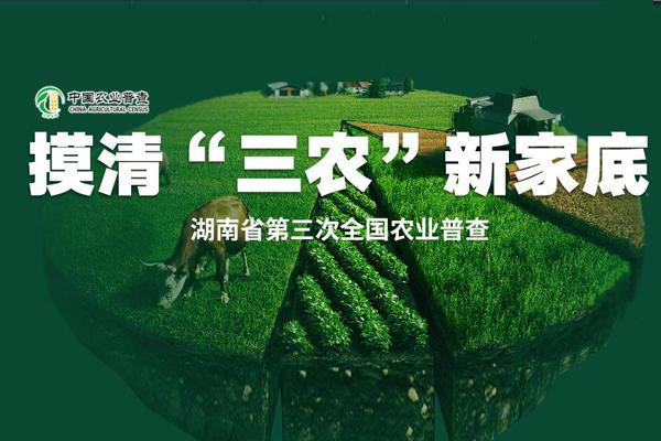 """摸清""""三农""""新家底 湖南省第三次全国农业普查"""