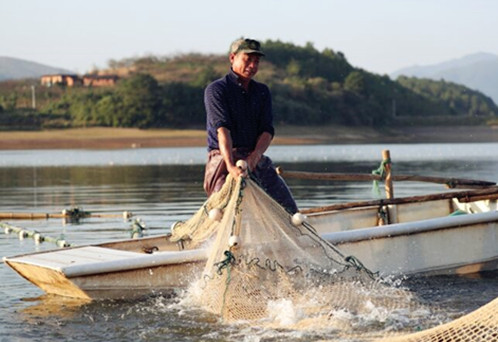 新田:生態富硒魚喜獲豐收