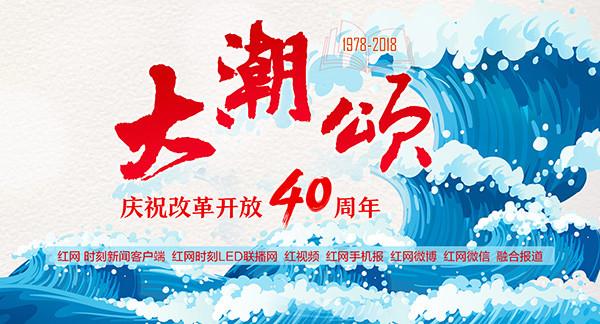 大潮颂———雨花区改革开放40周年