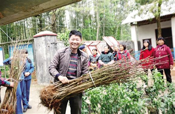 【央媒看湖南】临湘市发展特色产业扶贫工作纪实
