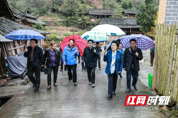 龙晓华到泸溪调研环保问题整治和脱贫攻坚工作
