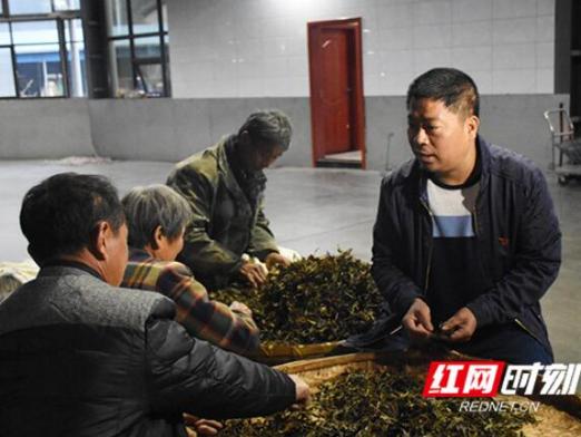 【三型干部在一线】周华山:开创经济发展与脱贫攻坚新局面