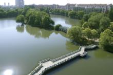 津市与南科大开展生态环境领域合作