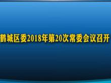 鹤城区委2018年第20次常委会议召开
