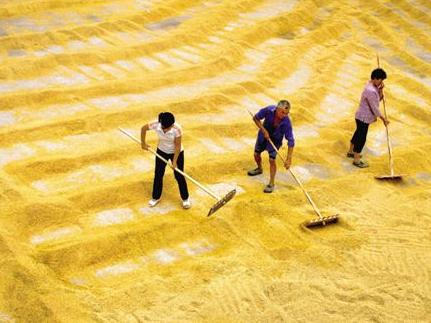 关于在湖南省启动2018年中晚稻最低收购价执行预案的通知