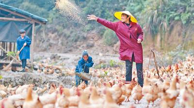 《人民日报》|农庄带农民一起谋脱贫
