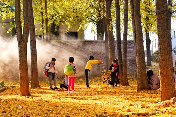 孩童散学顽闹,忽而靠头接语,忽而嬉笑无赖,那时不时飘落的叶子划过童真的脸颊,时间仿佛静止一般。