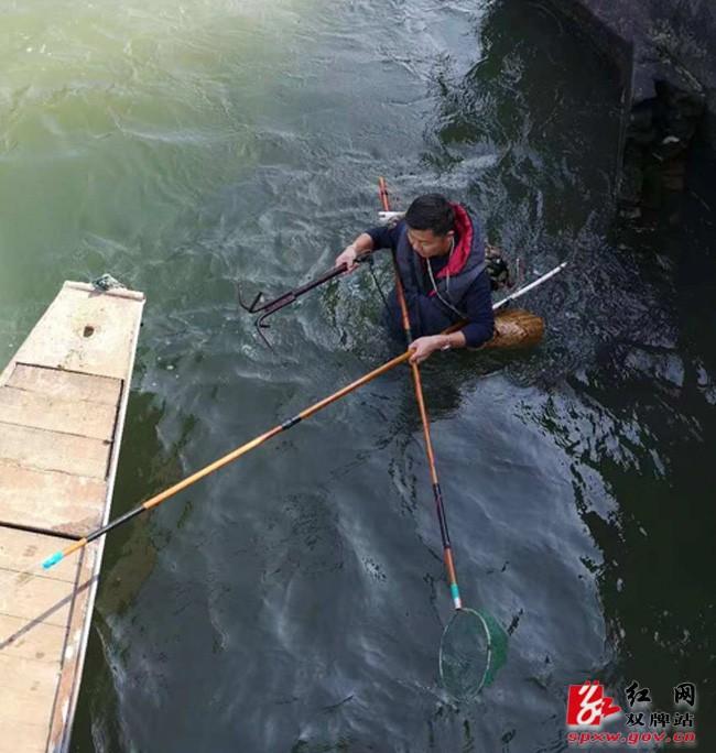 电打鱼使不得,破坏环境担刑责