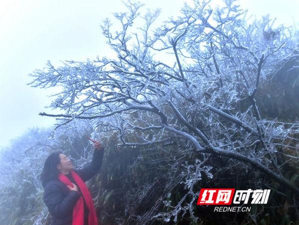 湖南蓝山云冰山景区12月24日开园迎客