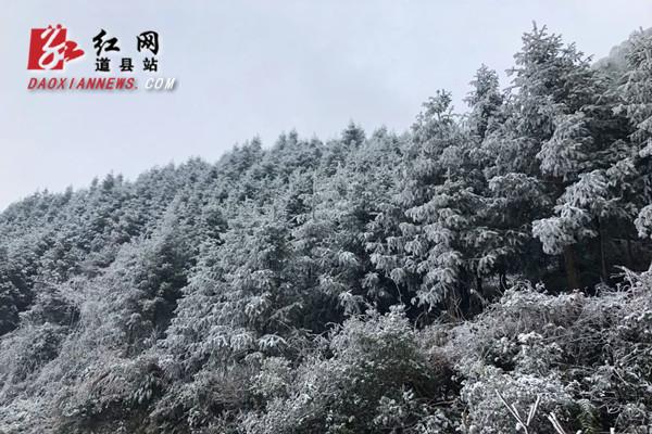 道县:惊现雾凇奇观 玉树琼枝晶莹剔透