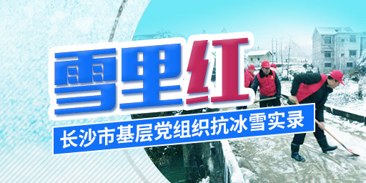 雪里红——长沙市基层党组织抗冰雪实录