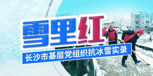 雪里红——长沙市基层党组织抗冰雪实录