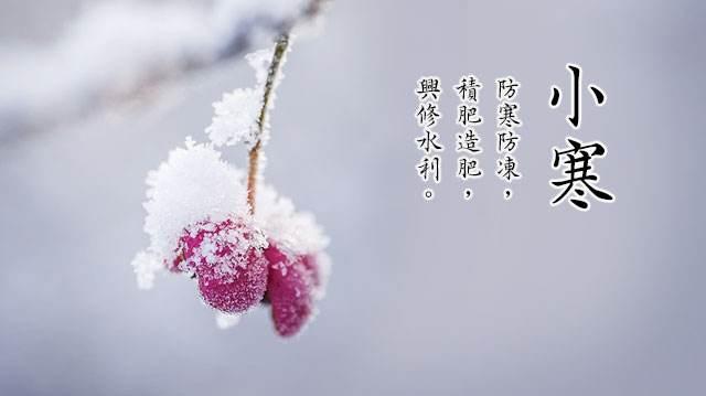 小雪无雪,小寒有寒