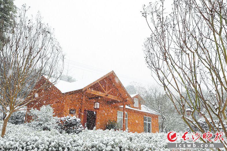 元旦下雪,但长沙县民宿依旧火热。资料图片