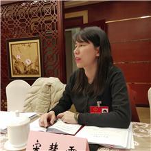 宋慧霞:加速高质建设大城北