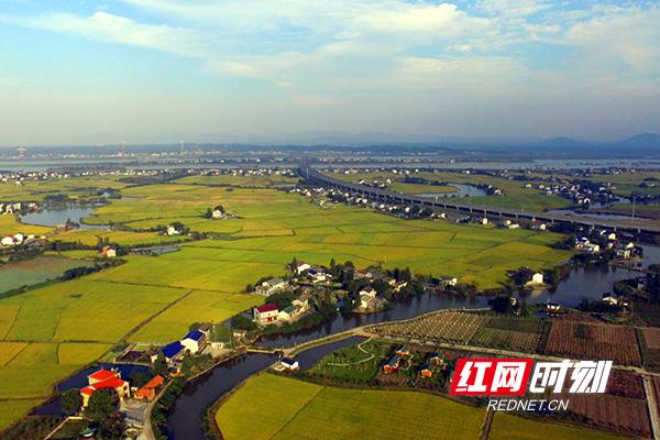 湘江村风景图 (1)副本.jpg