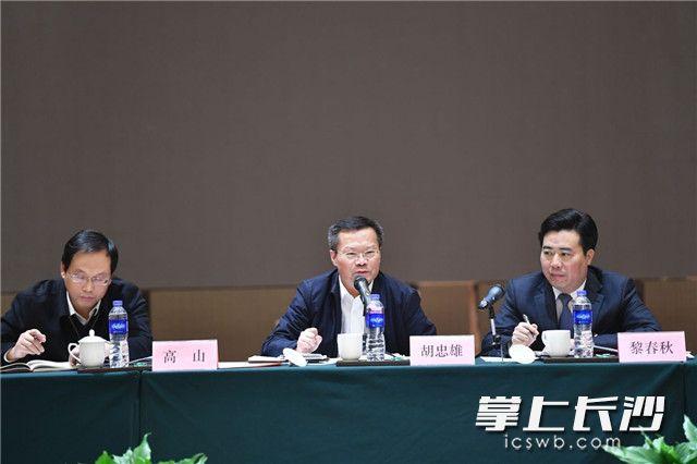 胡忠雄参加浏阳市、望城区代表团审议