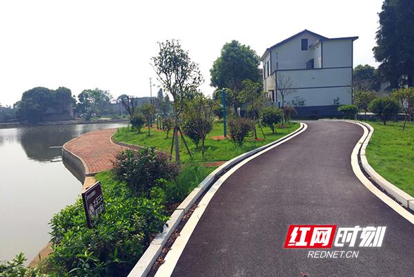 湘江村风景图 (4)副本.jpg