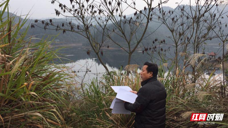 洪江市林业局开展全市生态公益林检查