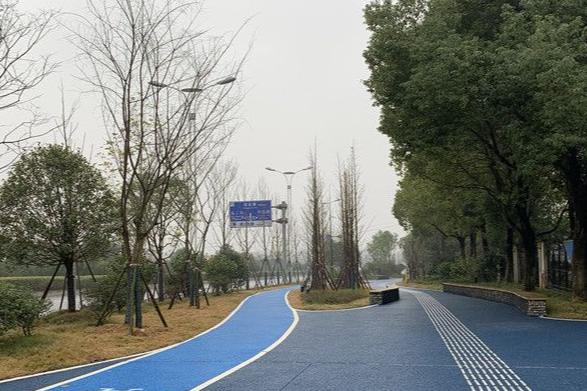 秀峰大道近日完成改造通车 雨水径流能直接下渗