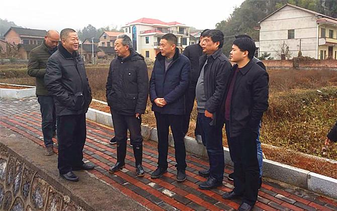 县政协主席陈军渝率队考察水果基地
