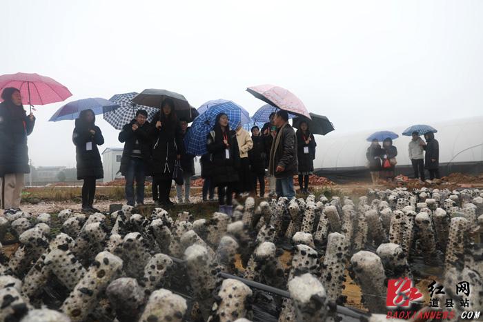 北京大学博士生服务团到道县调研脱贫攻坚工作