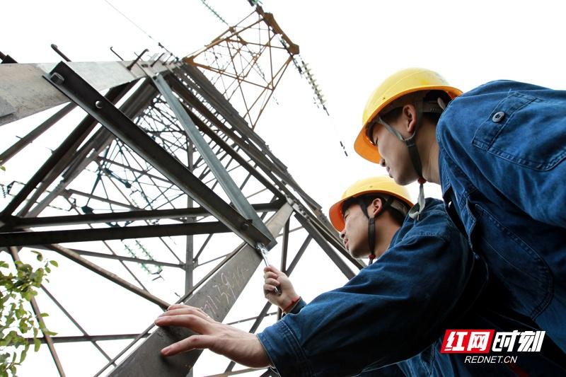 地凯防雷:国网湘潭供电公司开展线路防雷击专项治理
