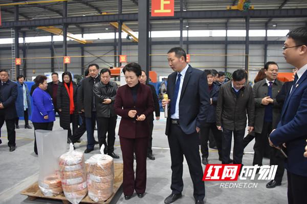 李晖、赵应云一行走访三湘电线电缆扩能项目。.jpg