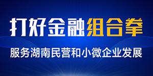 打好金融组合拳 服务湖南民营和小微企业发展