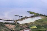 """湿地修复、四大""""千亿产业?#20445;?#28246;南省林业局公布2018""""湖南林业十件大事"""""""