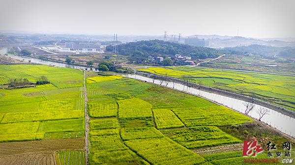 东安:美丽乡村景如画