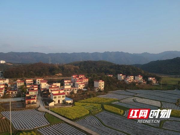 江华:美丽乡村入画来
