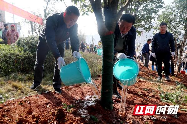 3月12日上午,天心区机关干部在绿心地区植树。.jpg