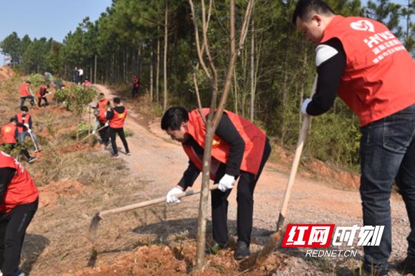 尽一份责任 播种一片绿色---邵阳市民政局开展