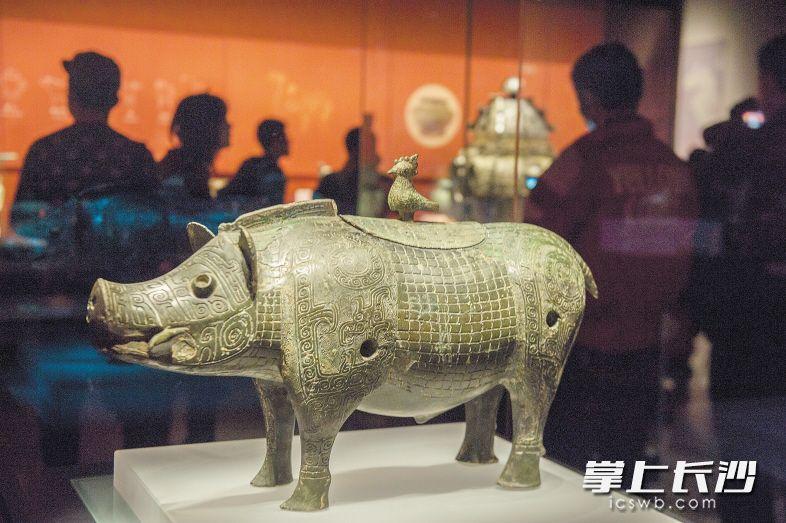 新湘博收藏的青铜豕尊 均为资料图片