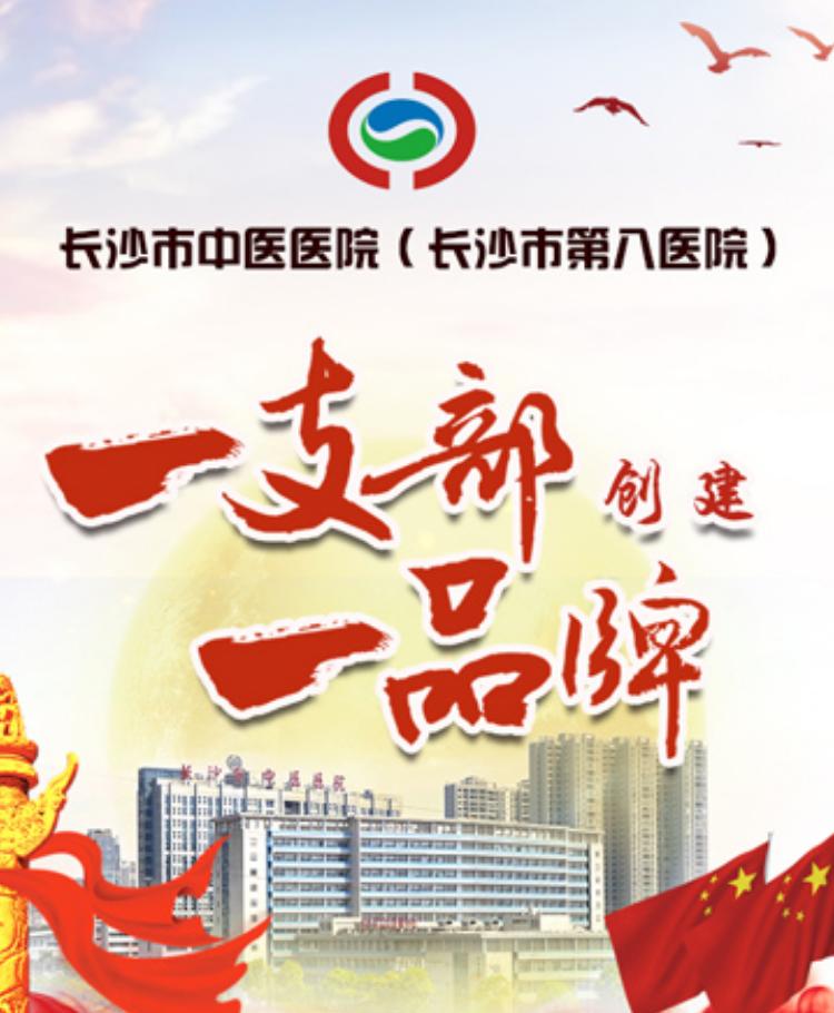 长沙市中医医院一支部一品牌创建