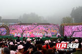 """2019年桃花源文化旅游节启幕 邂逅唯美""""田园生活"""""""