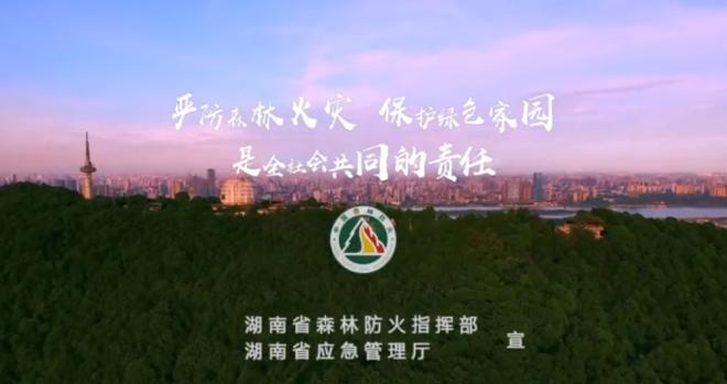 严防森林火灾 保护绿色家园