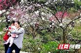 桃花源清明节首日人气火爆 精彩活动亮点纷呈