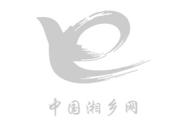 时时彩关于 设立湘乡市第八届人民代表大会有关专门委员会的决定