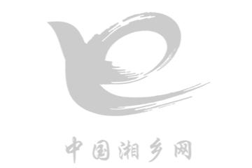 湘乡市第八届人民代表大会第四次会议时时彩公告 (第4号)