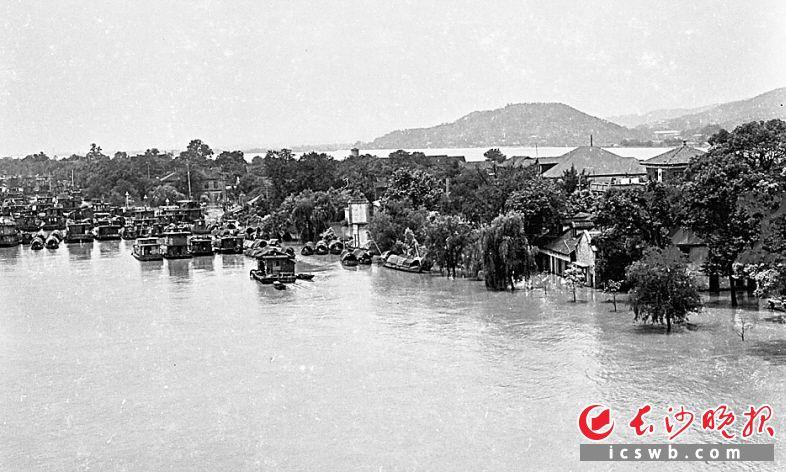 ↑1972年湘江洪水期间,橘子洲边停靠着大批船只,应街道和派出所的要求参与救灾。