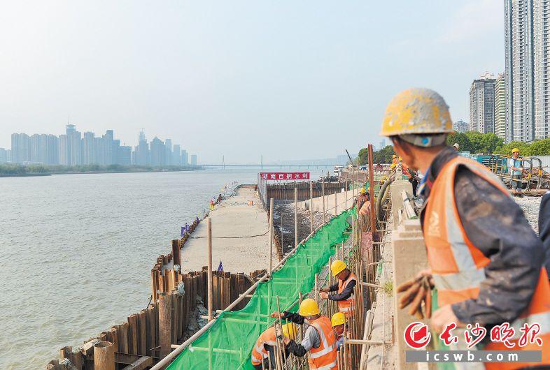 昨日下午,湘江东岸防洪综合改造工程项目万达广场段,工人们正在加紧施工。  长沙晚报全媒体记者 邹麟 摄