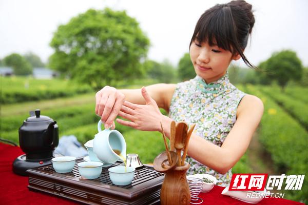 《茶道》摄于金井镇湘丰茶厂.jpg