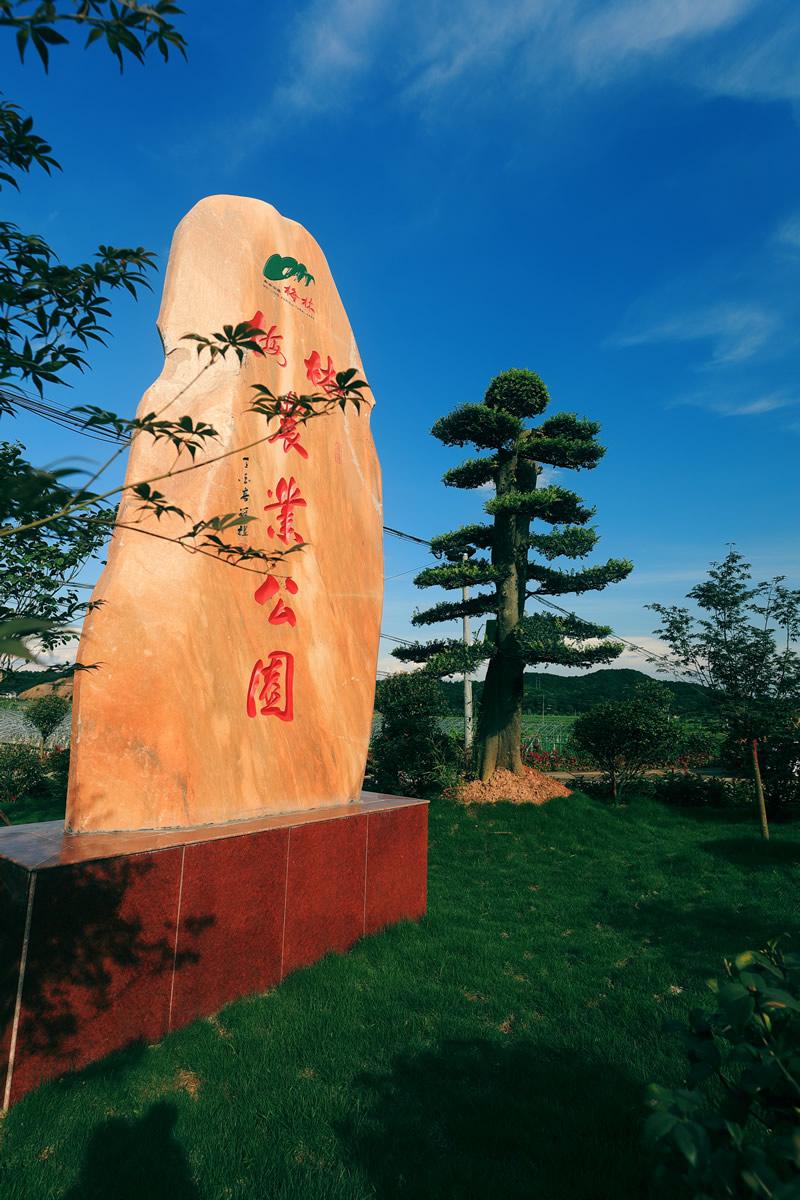 梅林农业公园(摄影:谭学文)