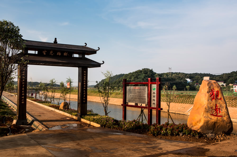 紫荆河自行车游道(摄影:谭学文)