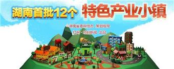 """图解丨湖南首批12个特色产业小镇""""特""""在哪里"""