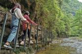 石门县青山溪:在峡谷中享受大自然的野趣