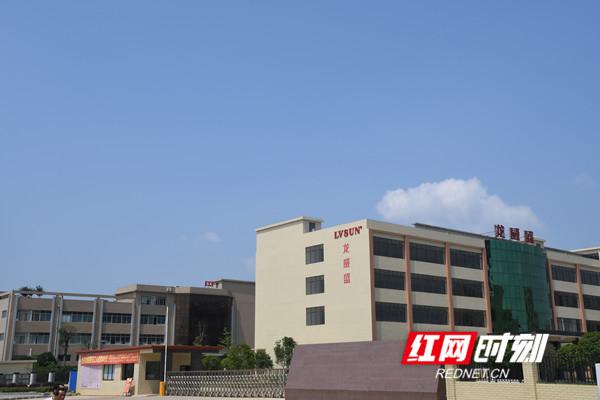 道县招商引资的龙威盛科技有限公司,每天可生产手机类电板10万块。.jpg